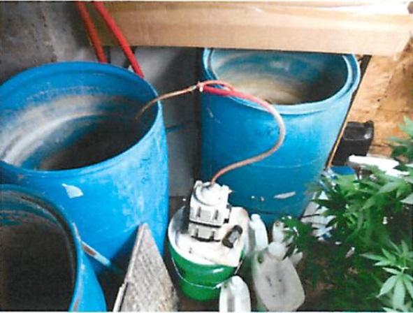 Pot Growing Operation Photos 8 growing operation, fertilizer