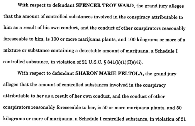 Ward, others indictment 2