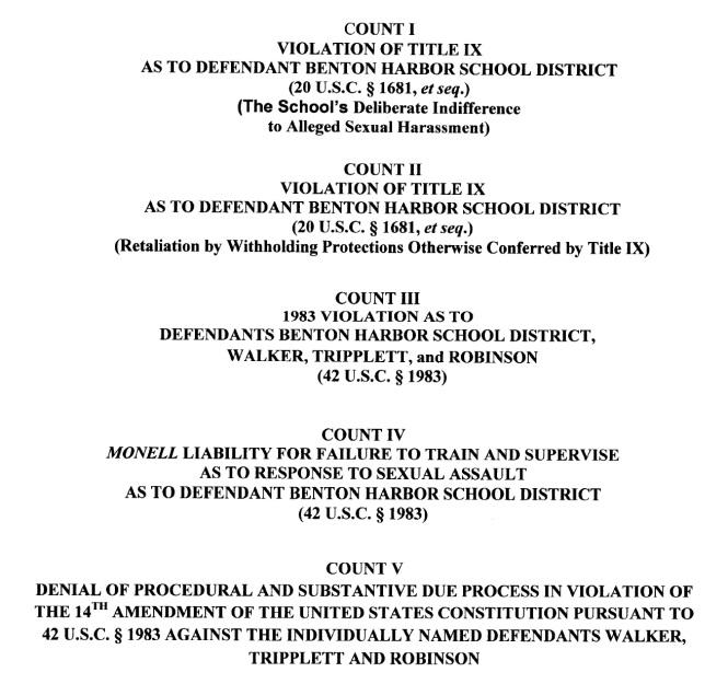 benton-harbor-cheelerleader-assault-lawsuit-9-five-counts