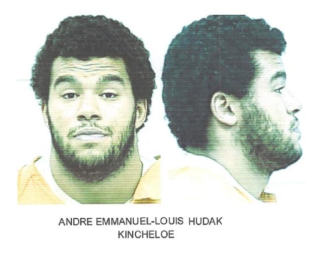 chippewa-county-sherrif-michael-d-bitnar-suspect-1
