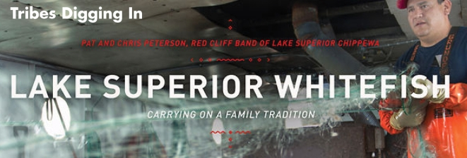 peterson-fishing-market-video-banner