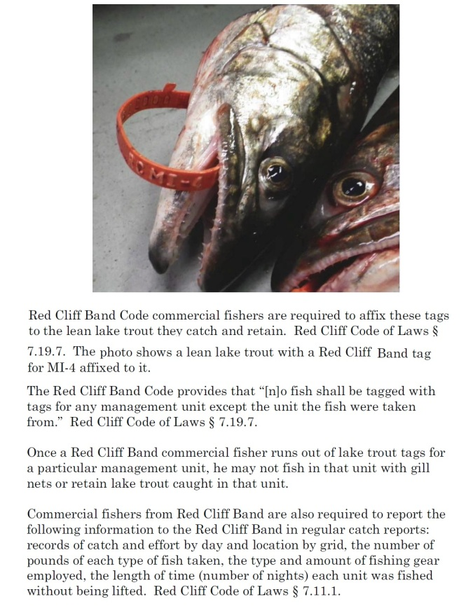 red-cliff-band-codes-tags-required-to-be-used-by-tribal-commercial-fishers-2-fish