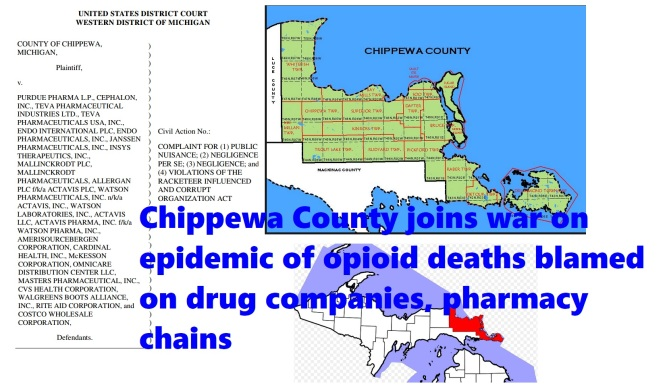 Chippewa County goes after drug companies and national
