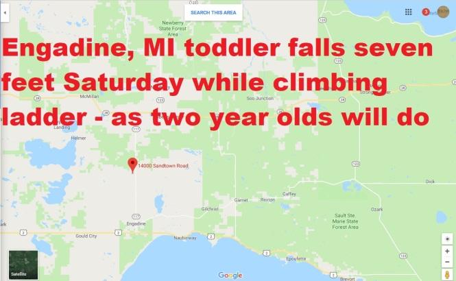 Engadine toddler graphic