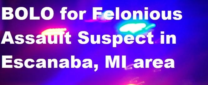 felonious assault graphic