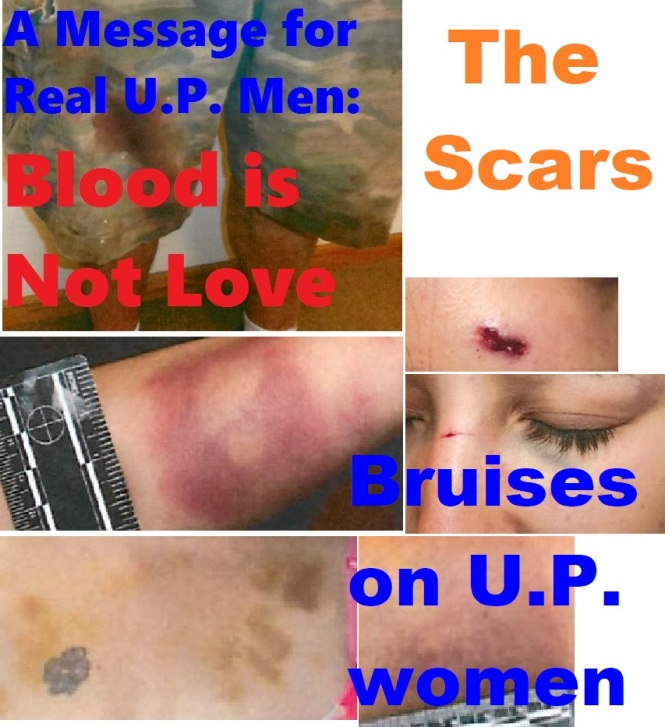 Violence in U.P. graphic.jpg